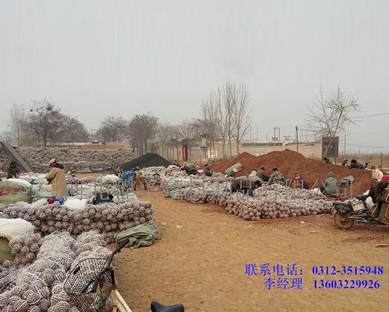 化工污水处理填料